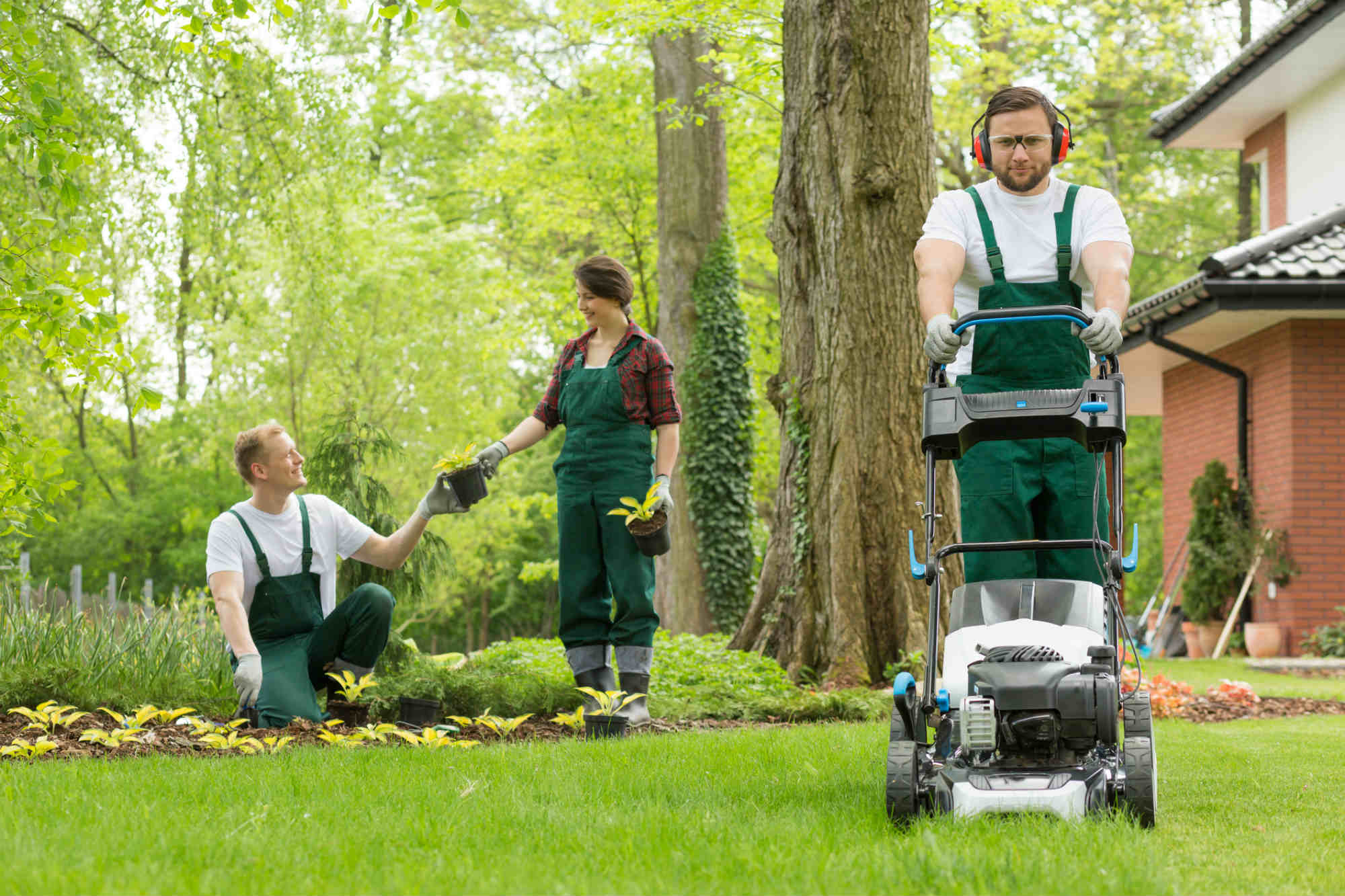 Quality Lawn Care Services Provider In Waco Tx 76712